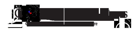 Conwy Valley Guns Logo